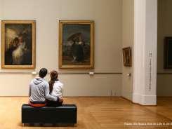 palais-des-beaux-arts-de-lille-jm-dautel-245x184